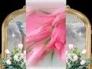 155597_38555_n_1