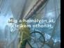 214632_65650_n_1