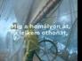 390237_33807_n_1