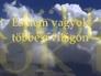 409624_25082_n_1