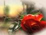 569466_54379_n_1