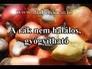 629207_36238_n_1