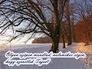706384_60357_n_1
