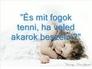 83622_403694_n_1