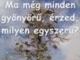 88055_615804_1