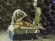 McHawer és Tekknő: Böllérrap