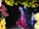 Németh Lehel - Visszahozom divatba a tangót