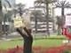 Free Hugs - Ingyen ölelések Peruban