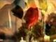Szeretettel Valentin Napra! Valentine's Day love... (St. Martin)