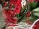 Fogadd el ezt a rózsát