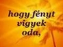 79681_348918_n_1